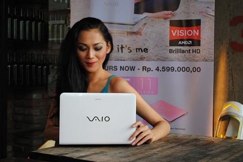 Sony VAIO AMD 03