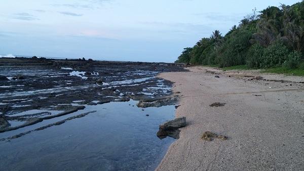 Hanya ada satu gubukan di Karang Bereum. Kita bisa membeli kopi atau mie. Pemandangannya cukup cantik. Kita bisa berjalan melewati karang hingga beberapa puluh meter. Ada ikan-ikan kecil, kepiting, dll.
