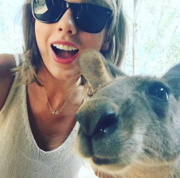 taylor-swift-kangaroo-selfie